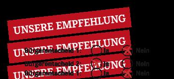 Illustration Bürgerentscheid